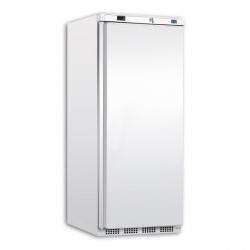 Congelator bauturi Tecfrigo PL 501 NT, capacitate 522 L, temperatura -10/-25 ºC, alb